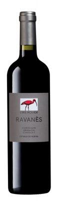 ibis_rouge